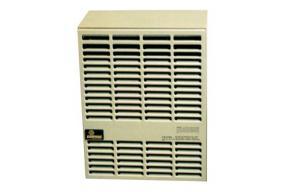 Direct Vent Propane Wall Heater 10000btu